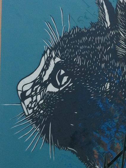 C215-le-chat